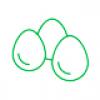 Дезинфекция скорлупы яиц
